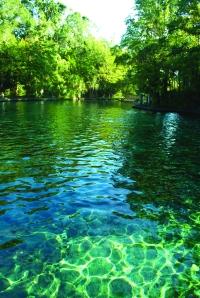 Wekiva Springs