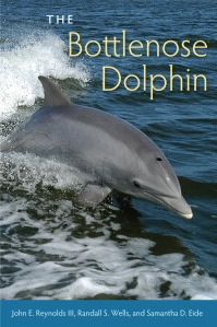 Bottlenose_Dolphin_RGB