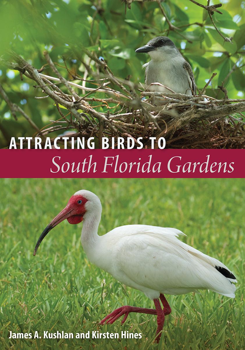 attracting birds to south florida gardens u2013 the florida bookshelf