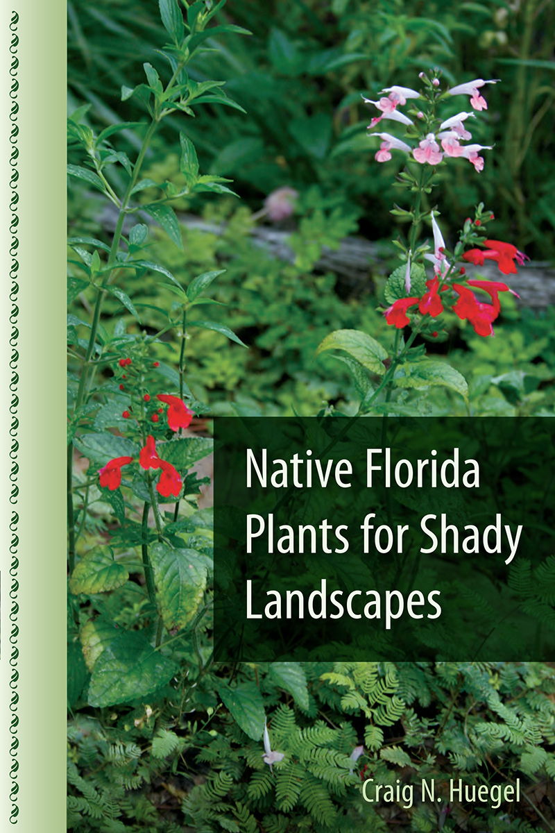 Native Florida Plants For Shady Landscapes.  Native_Florida_Plants_for_Shady_Landscapes_RGB