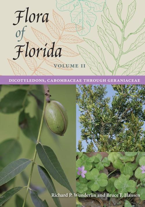 Flora_of_Florida_Volume_Two_RGB
