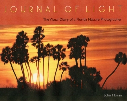 Journal_of_Light_RGB