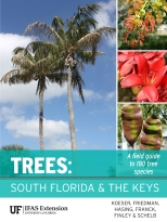 Trees_South_Florida_and_the_Keys_RGB