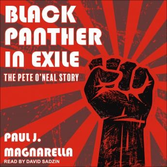 Black_Panther_in_Exile_audiobook
