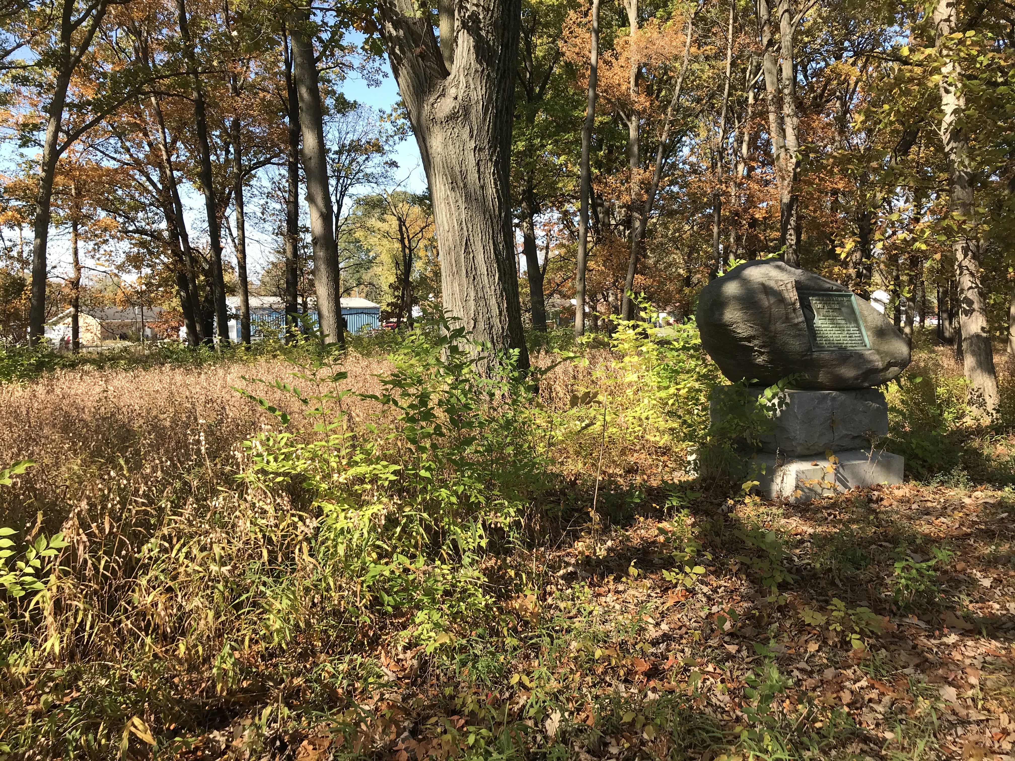 Memorial Grove Nov 2019